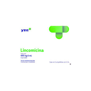 Yza-Lincomicina-600Mg/2Ml-6-Amp-imagen